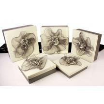 Geschenkboxen 3665-5