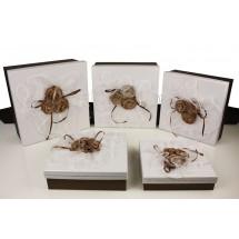 Geschenkboxen 3660-5